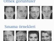 Prof. Dr. Ethem Alpaydın - Araştırma Alanı