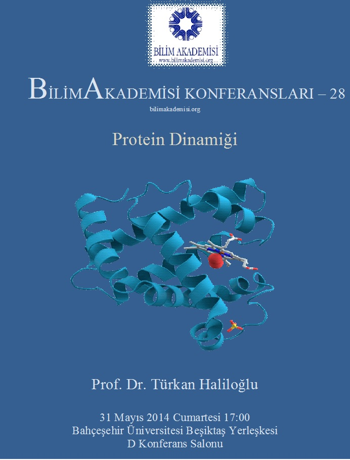 Protein Dinamiği - Konuşmacı : Prof. Dr. Türkan Haliloğlu