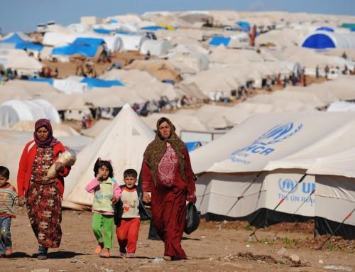 Bilim Akademisi'nin Küresel Mülteci Krizi Konusunda Çağrısı