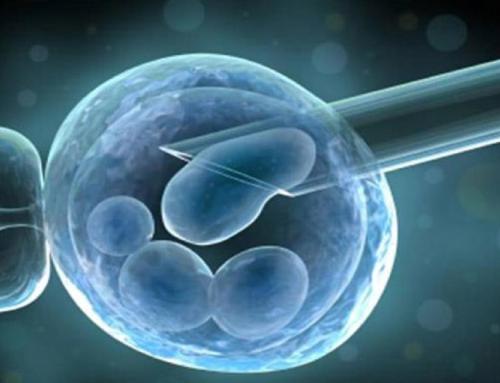 Kök Hücre Araştırma Sonuçlarının Patentlenmesi – Ünal Tekinalp (BA Konferansı 44)