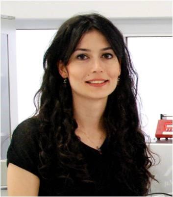Emine Yegan Erdem - Bilkent Üniversitesi - Makine Mühendisliği