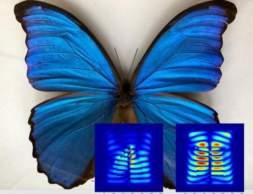Nano Boyutta Ölçme, Biçme ve Enerji Harmanlama: Prof. Dr. M. Pınar Mengüç
