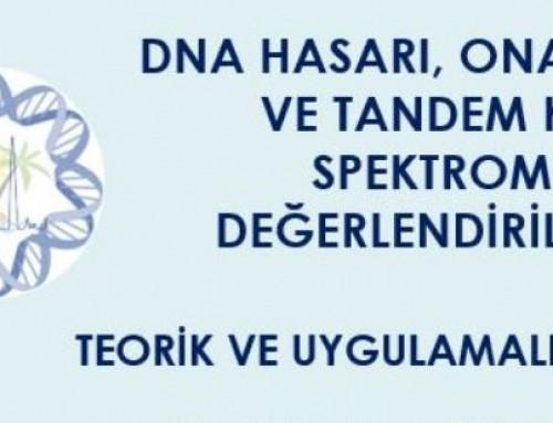 DNA Hasarı Konulu Teorik ve Uygulamalı Kurs