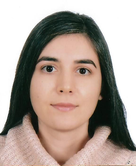 İkbal Elif Mahir Metinsoy - İstanbul Üniversitesi - Siyaset Bilimi ve Uluslararası İlişkiler